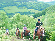 Pony trekking in the Black Mountains